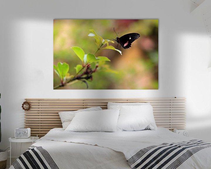 Impression: Vlinder sur Jeroen Koppes