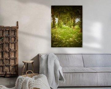 Wildblumen in Flevoland von Pascal Raymond Dorland