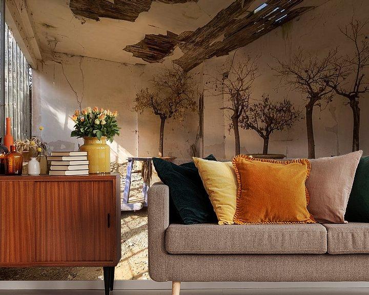 Beispiel fototapete: Verlassene Orangerie. von Roman Robroek