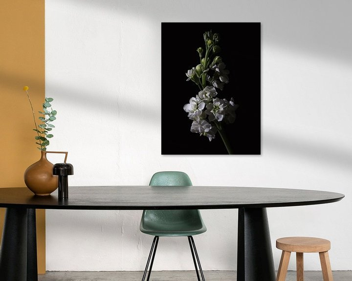 Sfeerimpressie: Low key bloem - Violier van Tim Abeln