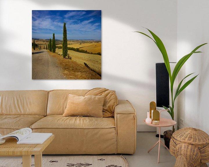 Sfeerimpressie: Cipressen in Toscane van Gerard Oonk