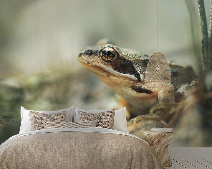 Beispiel fototapete:  Goldene Augen von Martzen Fotografie