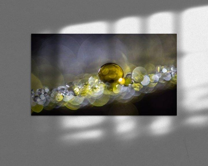 Sfeerimpressie: Druppels op een morgenster pluisje 1 van Bert Nijholt
