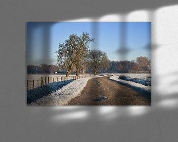 winter bij de buren