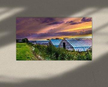 Glastuinbouw bij zonsondergang