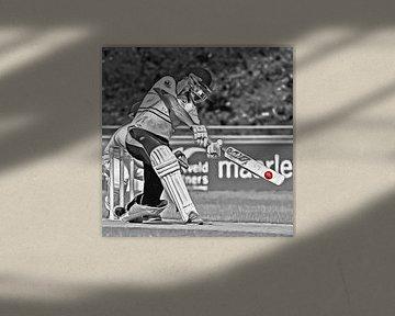 Cricket Sport Art Quick, Den Haag van Frank van der Leer