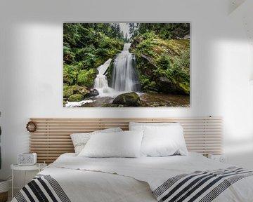 Waterval Schwarzwald Triberg van Alex Hiemstra
