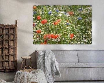 Klaprozen, korenbloemen en kamille van Jim van Iterson