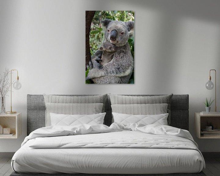 Sfeerimpressie: Koala (Phascolarctos cinereus) moeder knuffelt haar zeven maanden oude baby, Australië van Nature in Stock