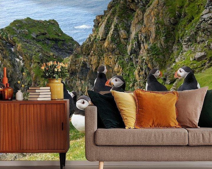 Sfeerimpressie behang: Papegaaiduikers (Fratercula arctica) aan de kust op de rand van een klif van Nature in Stock