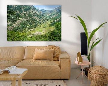 Vallei in Andorra  van Peter Apers