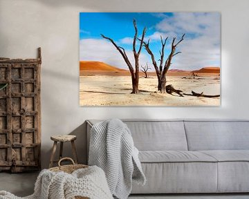 Kunst in een droge woestijn... van Aisja Aalbers