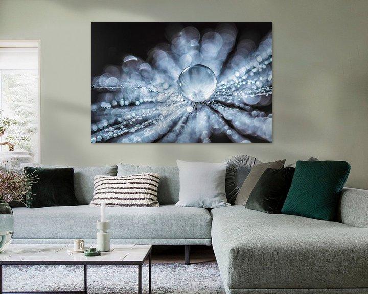 Sfeerimpressie: Paardenbloempluis met waterdruppeltjes van Bert Nijholt