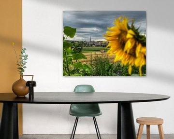Dorpje Vaals met zonnebloemen van John Kreukniet