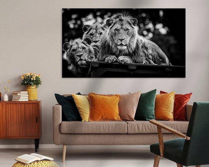 Sfeerimpressie: Starende Leeuwen van Joan le Poole