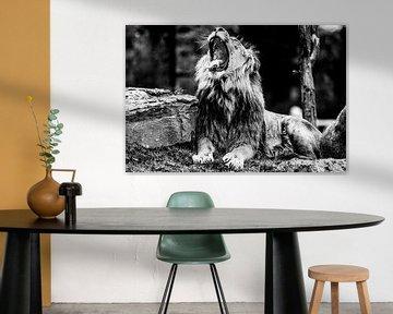 Gapende leeuw van Joan le Poole