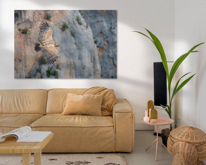 Sfeerimpressie: Vale Gier zwevend door de gorges van Bas Verschoor