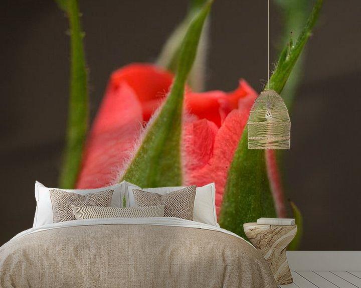 Sfeerimpressie behang: Mini Roos van Kimberly van Aalten