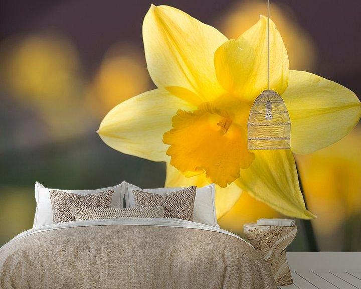 Impression: Narcissus sur Kimberly van Aalten