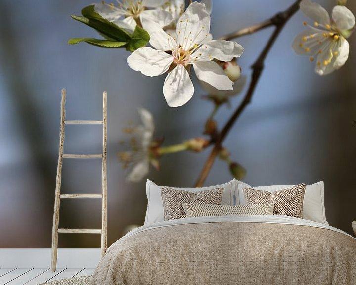 Sfeerimpressie behang: Witte bloesemtak van Rianne Fotografeert