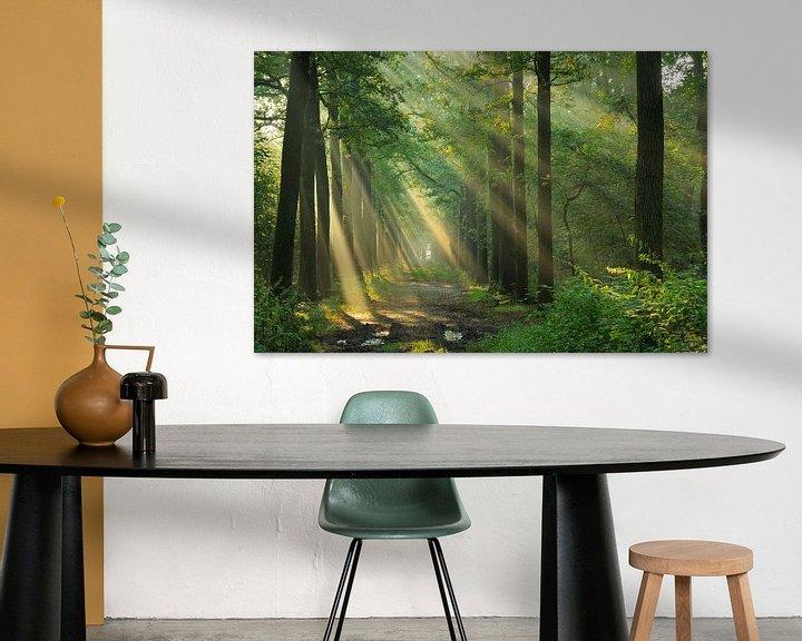 Sfeerimpressie: Zonlicht van Willem van Leuveren Fotografie
