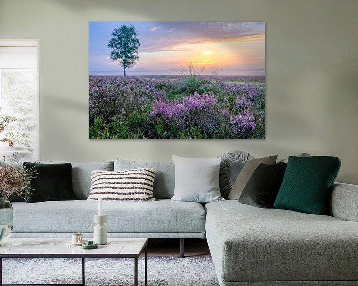 Sfeerimpressie: Zonsopkomst boven de bloeiende heide op de Veluwe van Sjoerd van der Wal