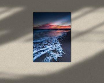 Washed ashore  van Tom Opdebeeck