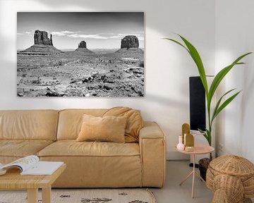 Monument Valley von Loek van de Loo