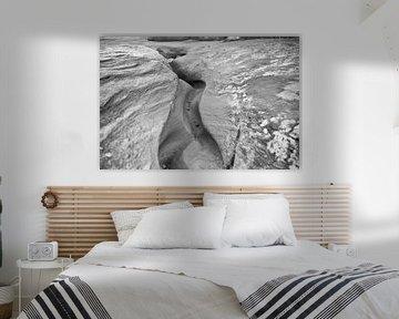 Erosion und Linien von Loek van de Loo