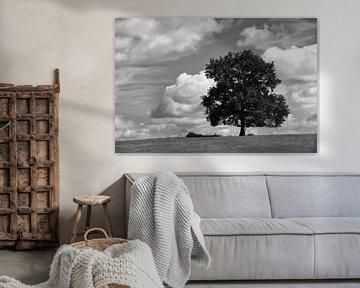 Der Baum von Hermen Buurman