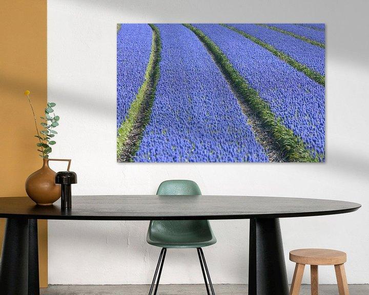 Beispiel: Veld met druifhyacinten - blauwe druifjes von Ronald Smits