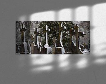 graf van Wim de Vos