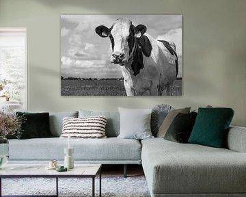 Die Kuh von Hermen Buurman