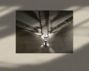 Speling van het licht von Maja van Eijndthoven