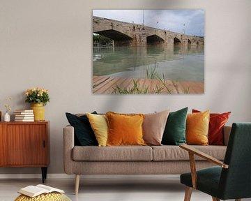 begroeide oever met brug von Maja van Eijndthoven