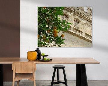 Fruit en kunst, scherptediepte von Maja van Eijndthoven