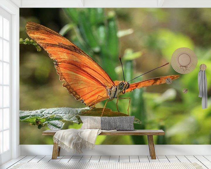 Beispiel fototapete: Julia Butterfly von Tim Abeln