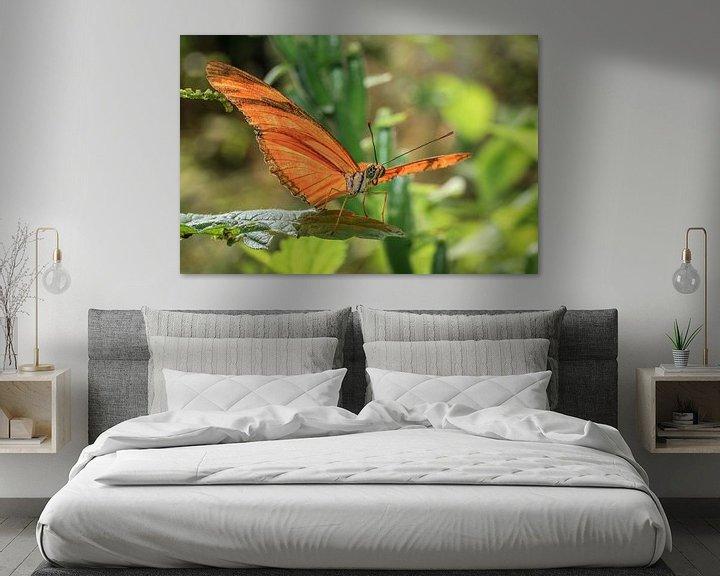 Beispiel: Julia Butterfly von Tim Abeln