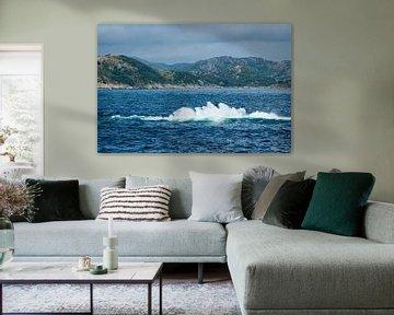 Blick auf den Lyngdalfjord in Norwegen sur Rico Ködder