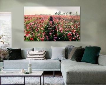 endless pink poppiefield von Els Fonteine