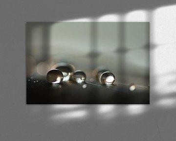 Meet the drops van Carla Mesken-Dijkhoff