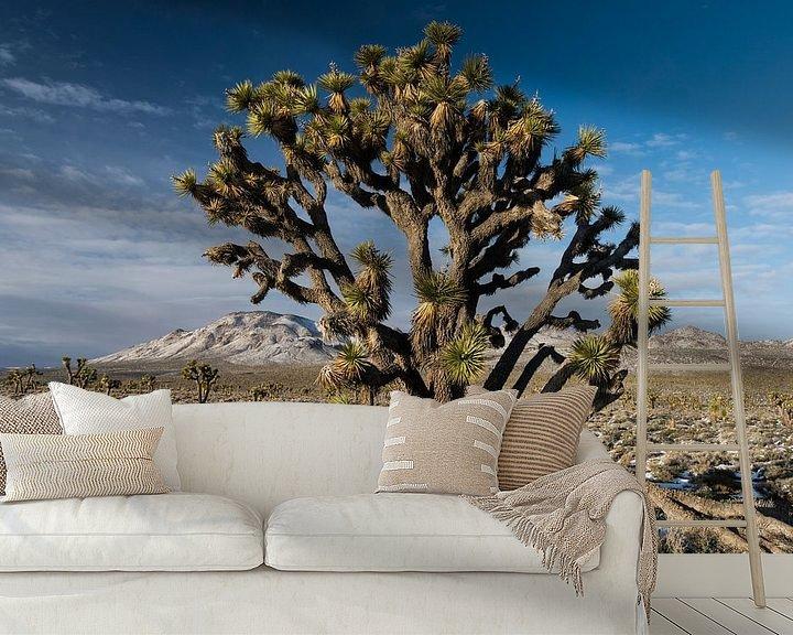 Sfeerimpressie behang: Portret van een zogeheten Joshua Tree (Yucca brevifolia) groeiend in Death Valley National Park in d van Nature in Stock