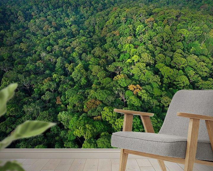 Sfeerimpressie behang: Luchtfoto van het regenwoud van Lambir Hills National Park van Nature in Stock