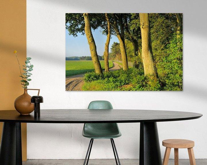 Sfeerimpressie:  Beek en Bultpad van Willem van Leuveren Fotografie