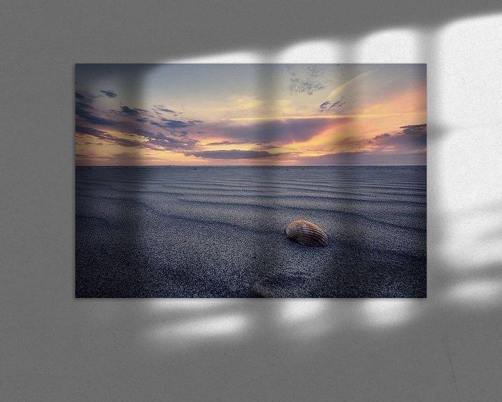 Sfeerimpressie: Sfeervolle foto van een schelp op het strand van Edwin van Wijk