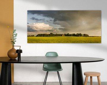 Wierdendorp Rottum van Bo Scheeringa Photography