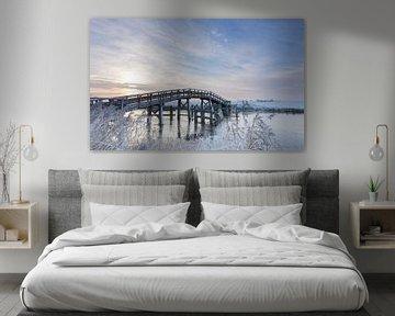 Bevroren brug van Saskia Jans