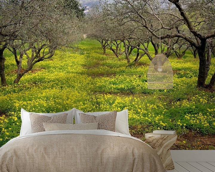 Impression: Geel groen voorjaar sur Jim van Iterson