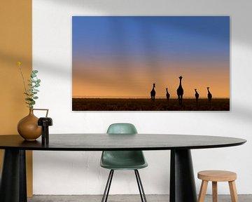 Vijf giraffes voor zonsopkomst van Bas Ronteltap