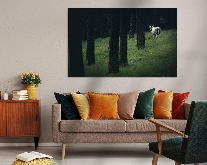 Sfeerimpressie: Sheep van Jip van Bodegom